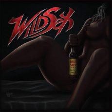 estudio de grabación - wildsex